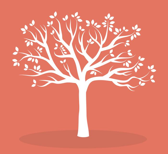 12 TREE 150ppp